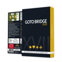 GOTO BRIDGE XVII